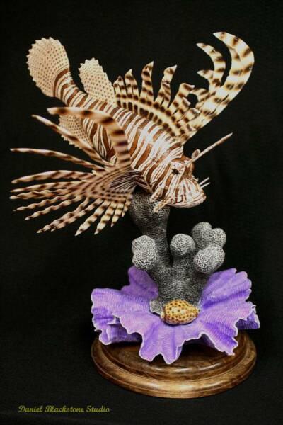 Marine life art and tropical fish carvings