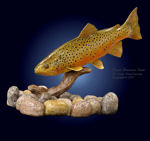 "13"" Brown Trout Wood Carving"