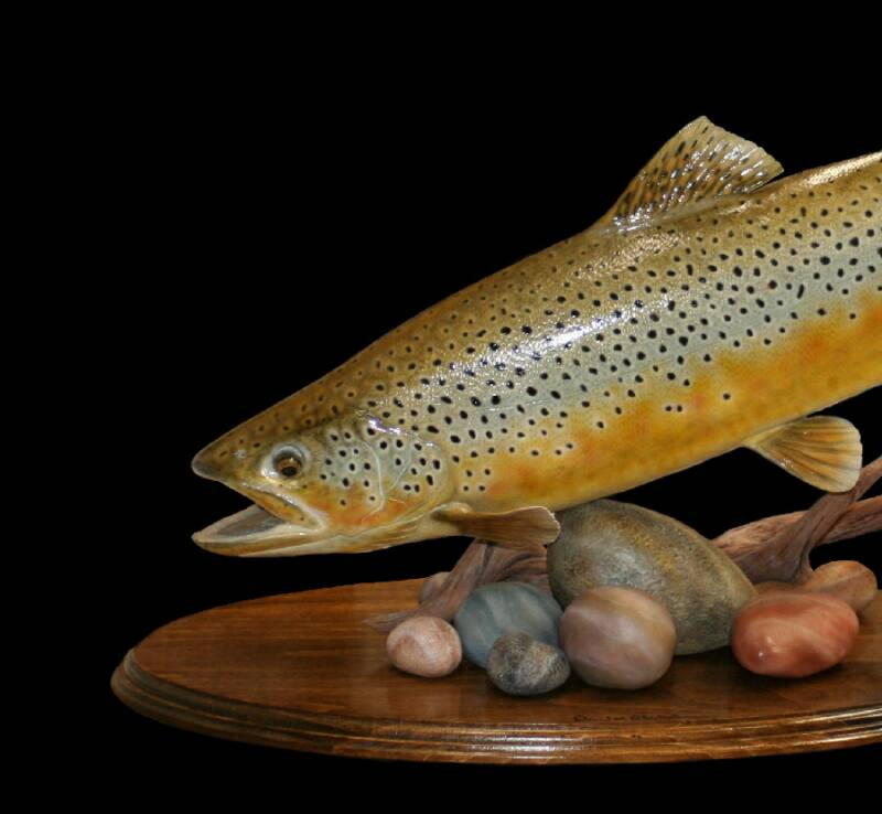 Wood fish carvings and sculptures