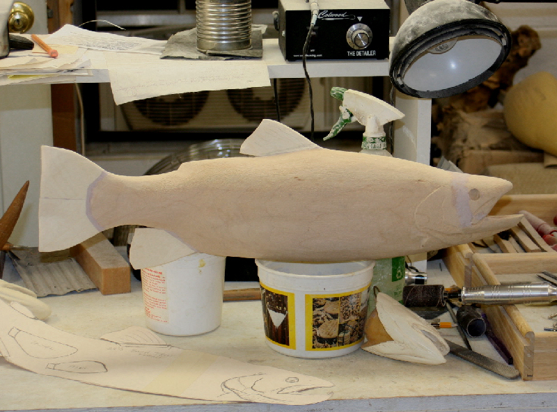 FISH SHAPED AND READY FOR FINS
